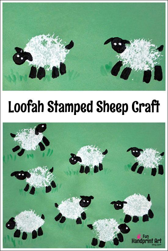Craft Sheep Head